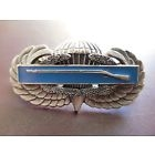 Airborne Combat Infantry Jump Wing Badge