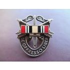 Special Forces Crest DI SF Iraq Ribbon Pin