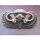 Skull Jump Wing Insignia Military Badge Death from Above