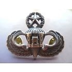 Airborne Engineer Master Jump Wing Badge Insignia US Army