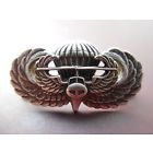 Jump Wing Air Assault Airborne Badge